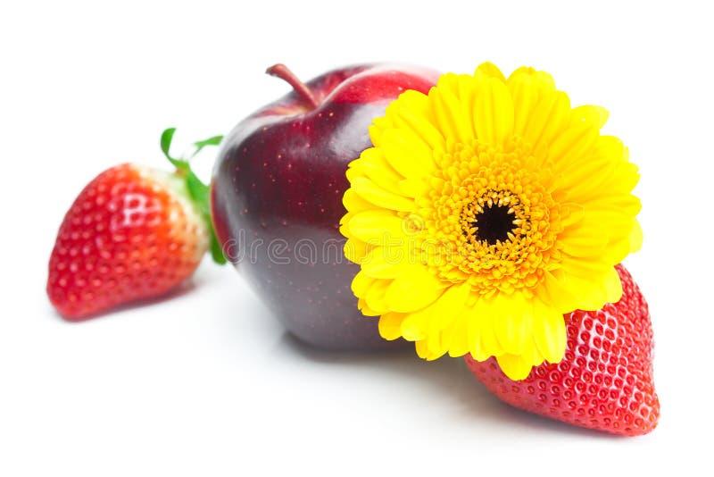Große saftige rote reife Erdbeeren, Blume und Apfel stockfotos