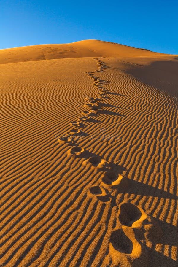 Große Sanddünen stockfoto