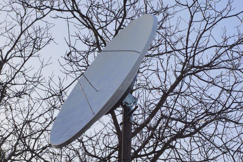 Große Satellitenschüssel auf dem Hintergrund von grauen Niederlassungen und von Himmel lizenzfreie stockbilder