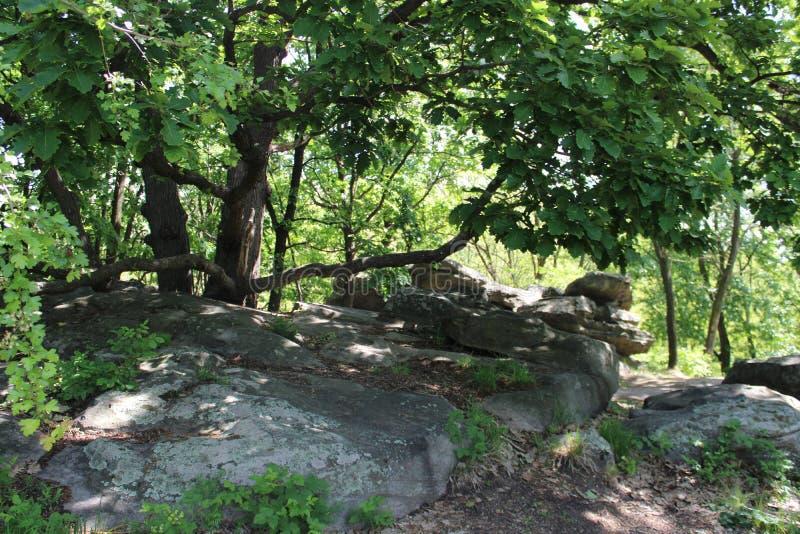 Große Steine in Szentbekalla stockfoto