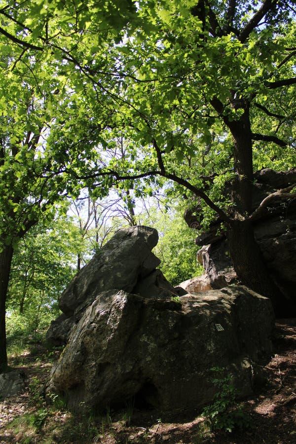 Große Steine in Szentbekalla lizenzfreie stockfotografie