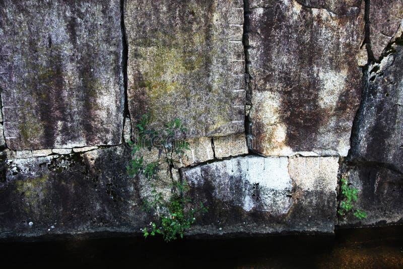 Große Steinwand verpackte fest zusammen stockfotografie