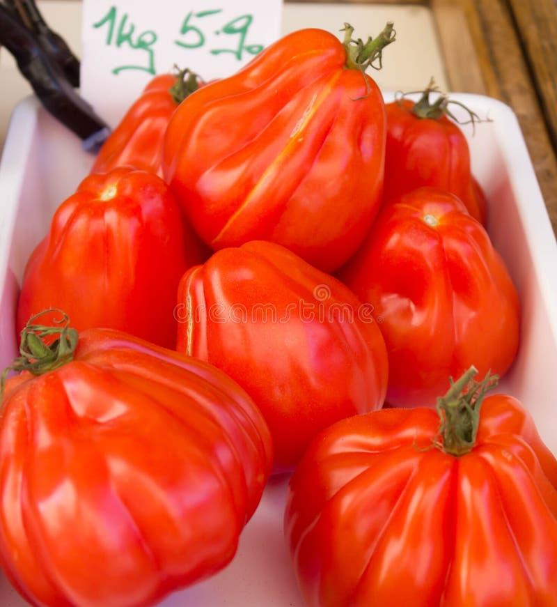 Große Tomaten lizenzfreies stockfoto