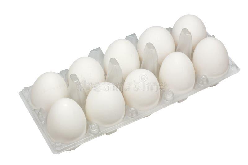 Große wirkliche weiße ländliche Eier lizenzfreie stockfotos