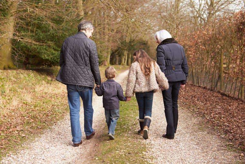 Großeltern mit Enkelkindern auf Weg in der Landschaft stockbilder