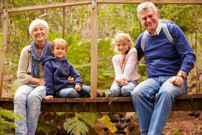 Großeltern mit Grandkids auf Brücke in einem Wald, Porträt lizenzfreies stockfoto