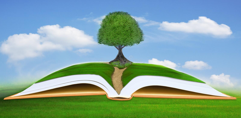 Großer Baum auf offenem Buch mit Hintergrund des blauen Himmels lizenzfreie stockbilder