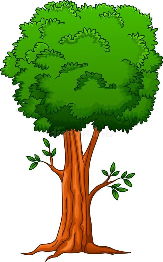 Großer Baum der Karikatur vektor abbildung