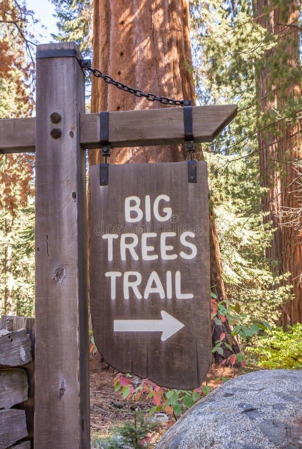 Großer Baumwegweiser im Mammutbaum-Nationalpark lizenzfreies stockbild