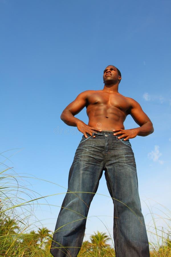 Großer Bodybuilder stockfotografie