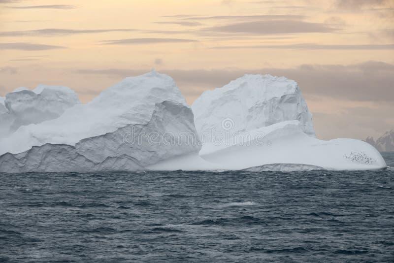 Großer Eisberg, der bei Sonnenuntergang in Bransfield-Straße nahe dem n schwimmt lizenzfreies stockbild