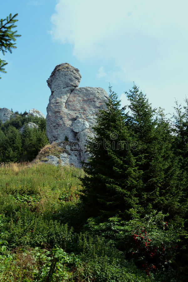 Großer Felsen lizenzfreies stockfoto