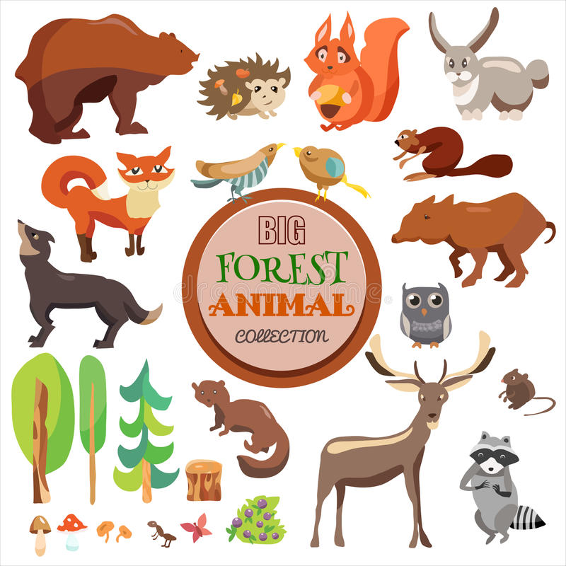 Großer Forest Funny Animals Set Vektor-Sammlung, auf weißem Hintergrund, Fox, Eichhörnchen, Bären, Wolf und anderen, stock abbildung