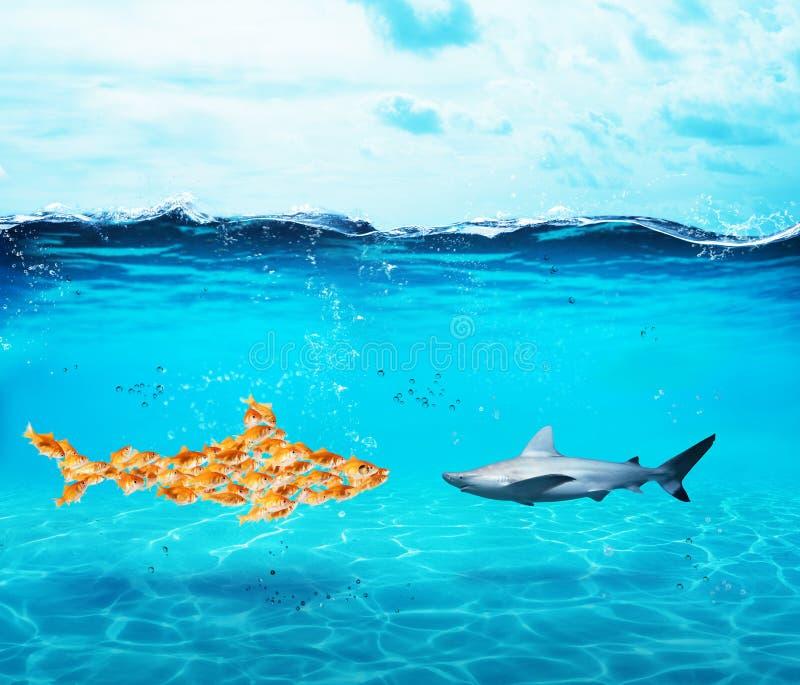 Großer Haifisch gemacht von den Goldfischen Konzept der Einheit ist Stärke, Teamwork und Partnerschaft lizenzfreie stockfotos