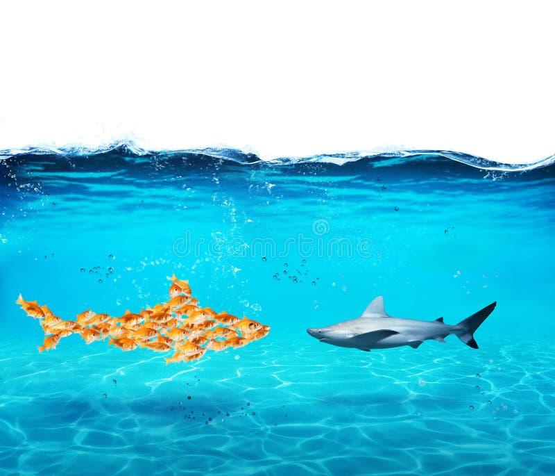 Großer Haifisch gemacht von den Goldfischen Konzept der Einheit ist Stärke, Teamwork und Partnerschaft lizenzfreies stockbild