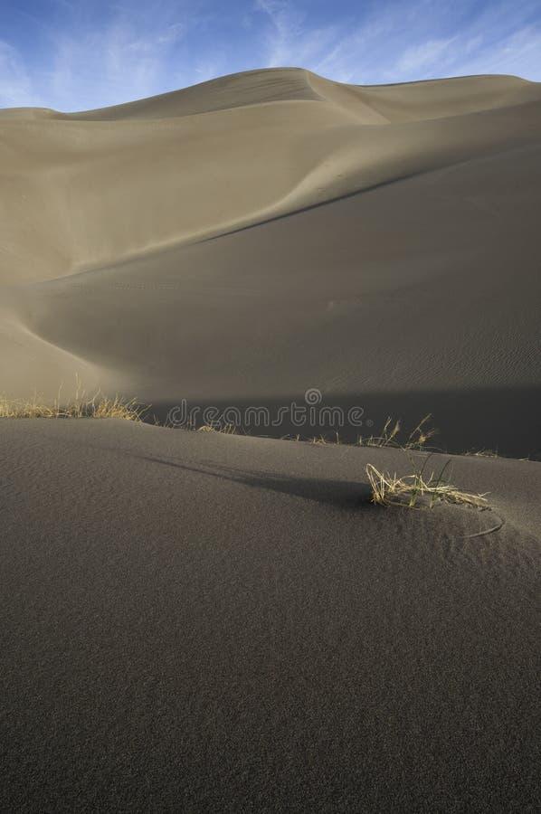 Großer Sanddüne-Nationalpark in Süd-Colorado stockbilder