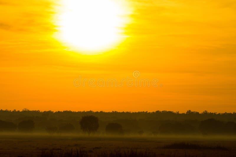 Großer Sonnenaufgang in Kakadu stockfoto