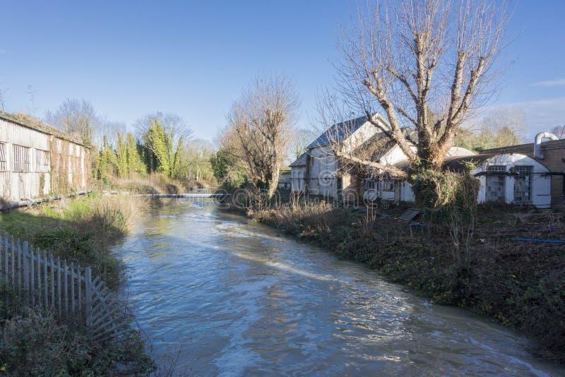 Großer Stour-Fluss, Chartham, Kent, Großbritannien lizenzfreie stockfotos