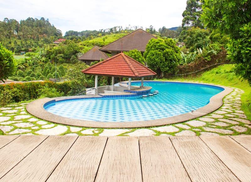 Großer Swimmingpool im Garten stockbild