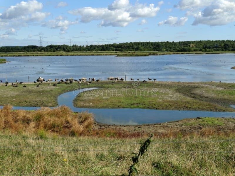 Großer Teich an altem machen fest lizenzfreies stockfoto