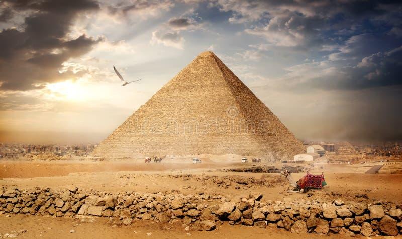 Großer Vogel über Pyramiden lizenzfreie stockbilder