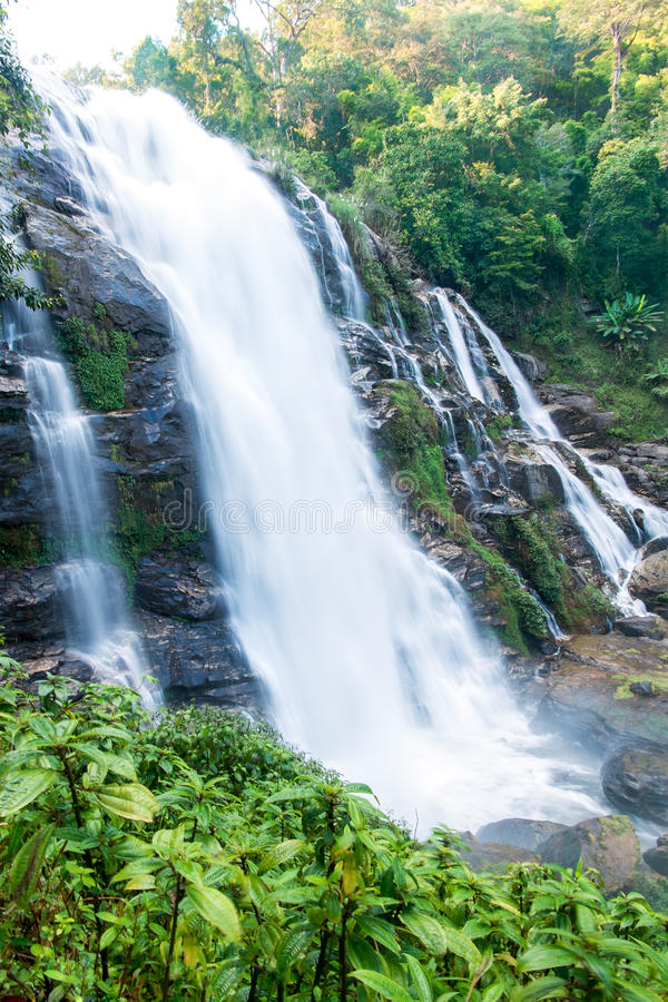 Großer Wasserfall im Wald lizenzfreie stockbilder