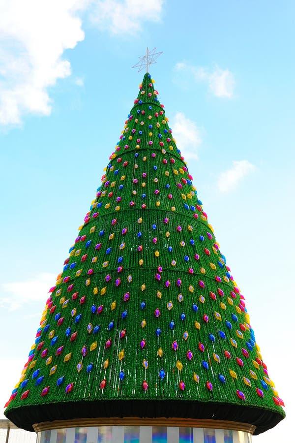 Großer Weihnachtsbaum stockfoto