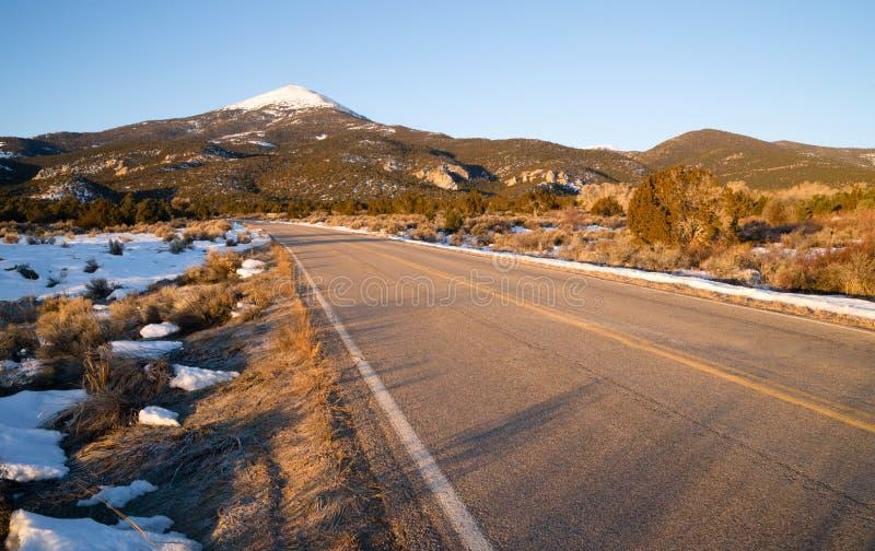 Großes Becken-Nationalpark kahler Buck Mountain Nevada West stockbild