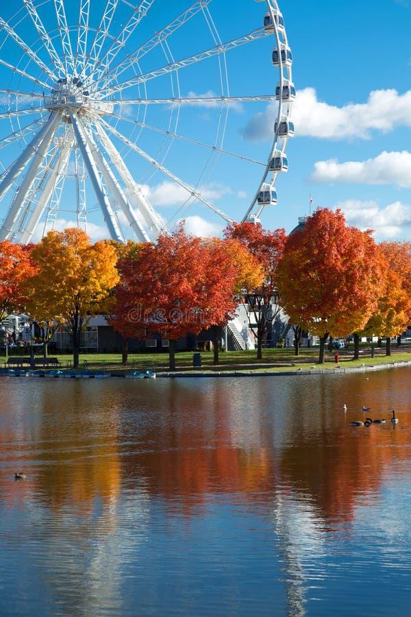 Großes Rad von Montreal während der Herbstsaison lizenzfreie stockfotos