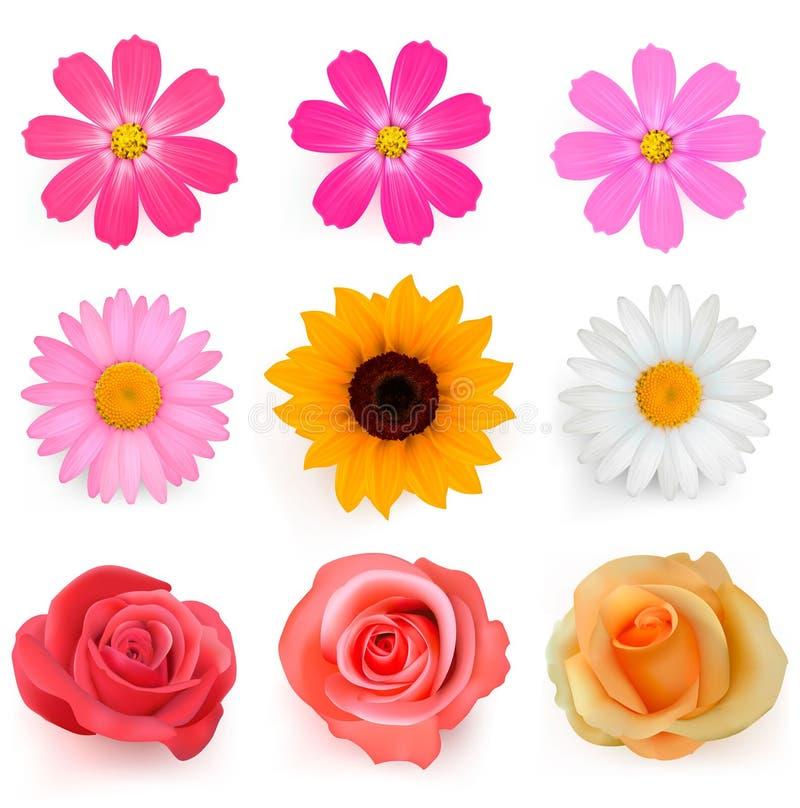Großes Set schöne bunte Blumen. vektor abbildung