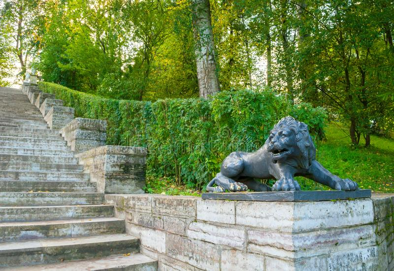 Großes Steintreppenhaus und Skulptur eines schwarzen Löwes auf einem Sockel in Pavlovsk parken, St Petersburg, Russland lizenzfreies stockfoto