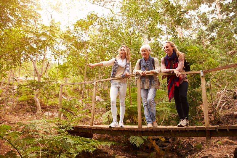 Großmutter, Mutter und Tochter auf einer Brücke in einem Wald stockfoto