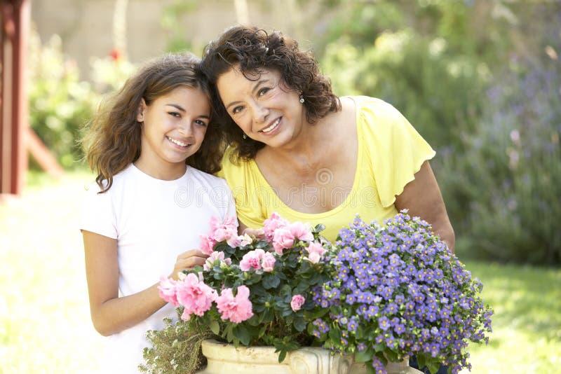 Großmutter und Enkelin, die zusammen im Garten arbeiten lizenzfreie stockfotos