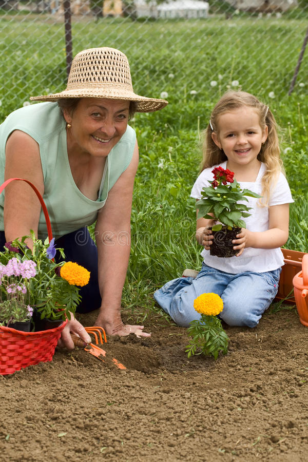 Großmutter, welche die Gartenarbeit des kleinen Mädchens unterrichtet stockfotos