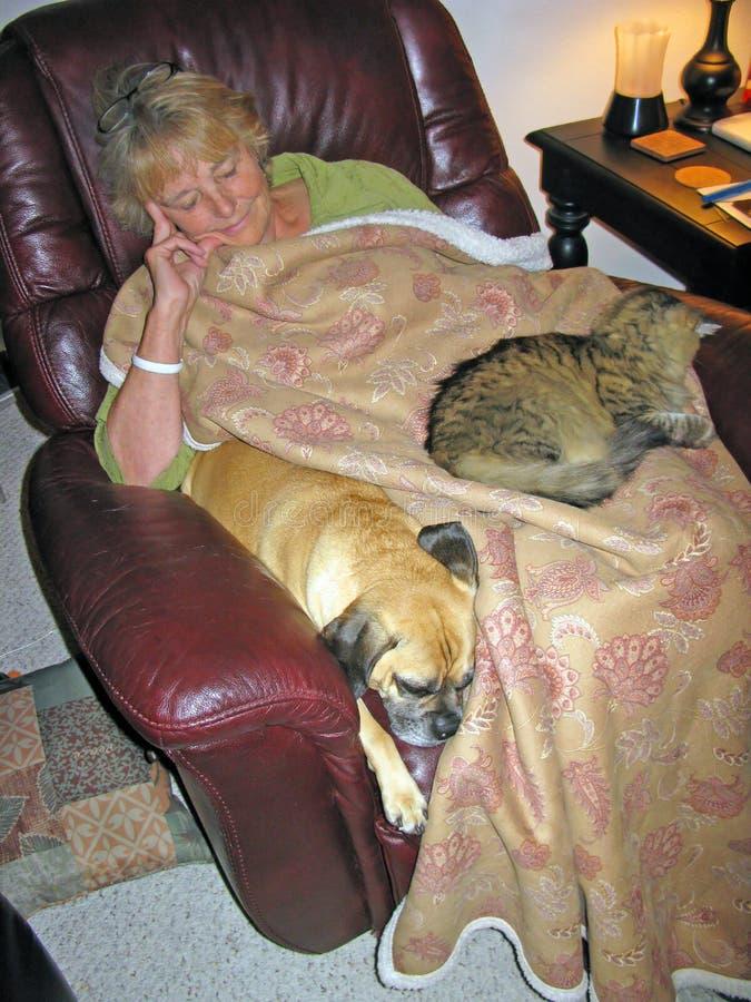 Großmutter, welche die Haustiere Babysitting ist stockfotografie