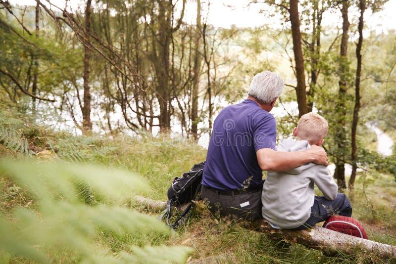 Großvater und Enkel auf einer Wanderung, die auf einem gefallenen Baum in einem Wald, nach vorn schauend, Rückseitenansicht sitzt lizenzfreie stockfotos