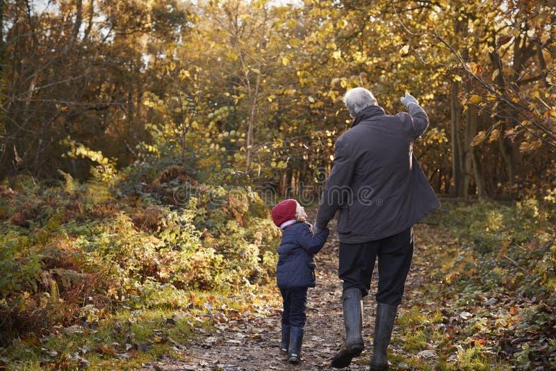 Großvater und Enkelin, die Autumn Walk genießen lizenzfreie stockbilder