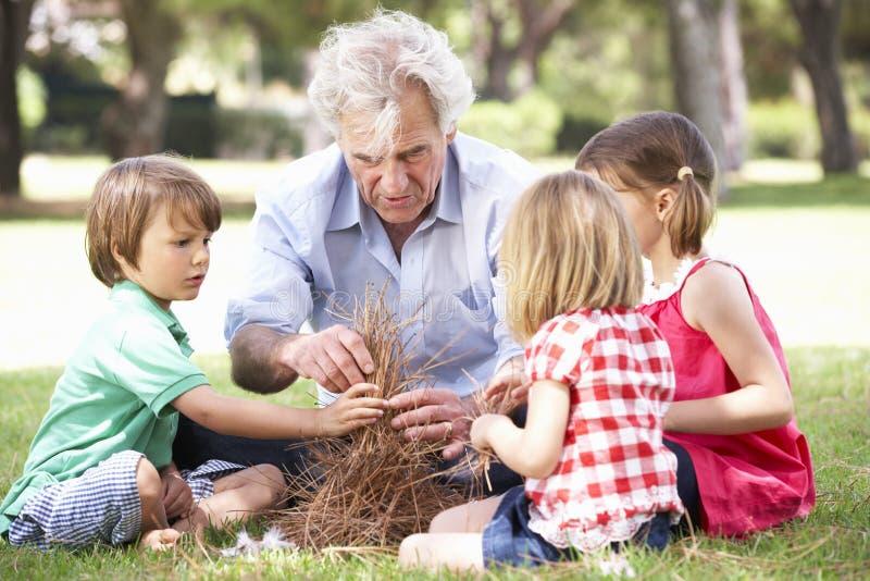 Großvater-unterrichtende Enkelkinder, zum des Lager-Feuers zu errichten lizenzfreies stockbild