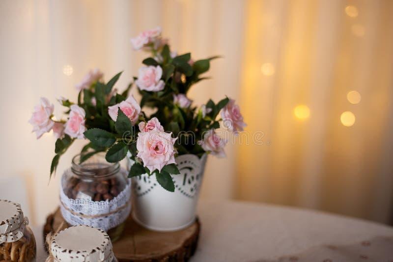 Großartige Frühlingsblumen mischen die Behältergartenarbeit stockfotografie
