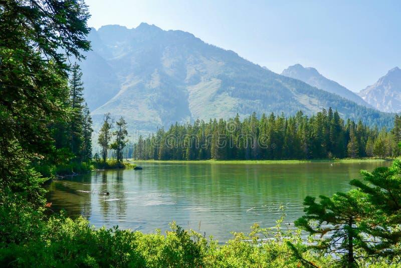 Großartiger Teton Nationalpark, Wyoming, USA lizenzfreie stockfotos