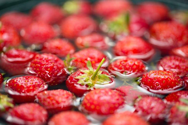 Großaufnahme von Erdbeeren im Wasser stockfoto