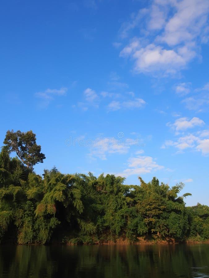 Große Sümpfe und Stoff und reichliche Wälder auf einem Hintergrund des blauen Himmels und etwas bewölkt für natürlichen Hintergru stockfotografie
