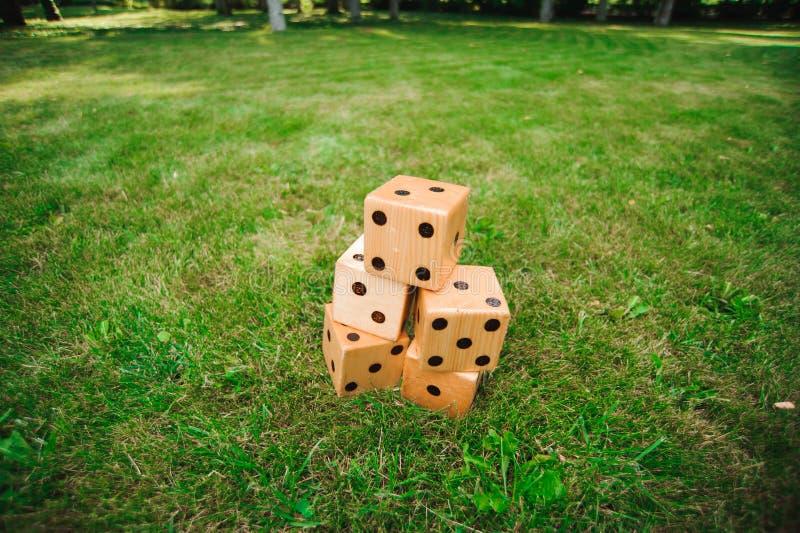 Große Spiele im Freien - würfelt, riesiges Spiel im Freien auf grünem Gras lizenzfreies stockfoto