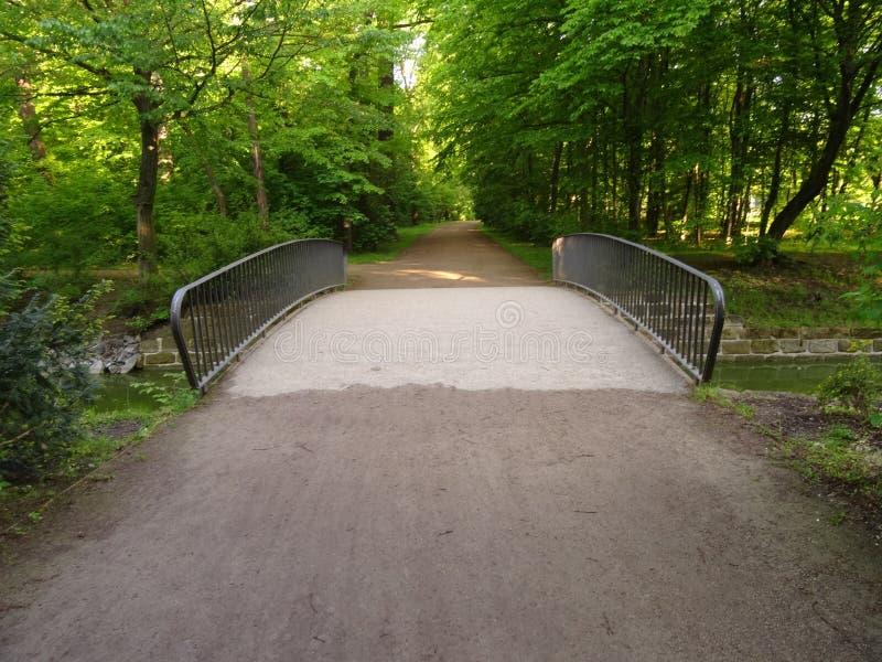 Großer Garten Park Dresden Free Public Domain Cc0 Image
