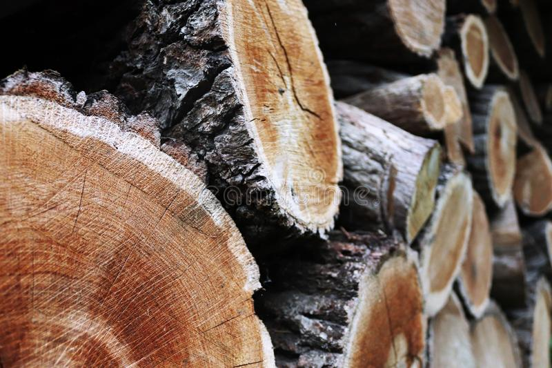 Großer Stapel des Brennholzes lizenzfreie stockfotografie