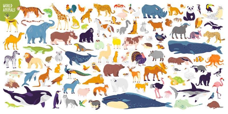 Großer Vektorsatz unterschiedliche Weltwilde Tiere, Säugetiere, Fische, Reptilien und Vögel Seltene Tiere Lustige flache Charakte vektor abbildung