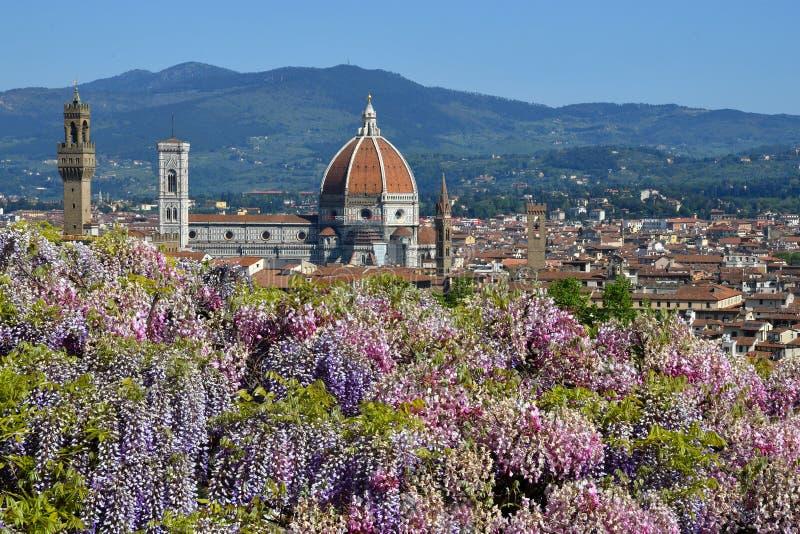 Gro?artige Ansicht Glockenturm von der Kathedrale Santa Maria del Fiore und Giottos in Florenz mit einer purpurroten bl?henden Gl stockfotografie