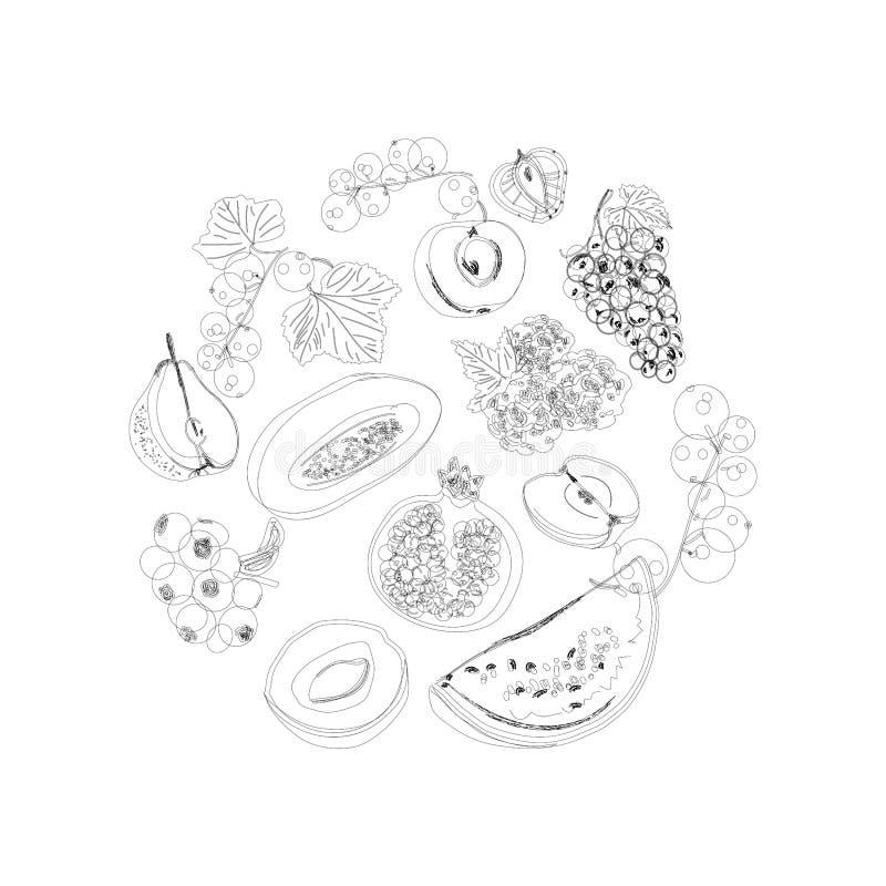 Gro?e Fruchtsatz-Gekritzelikonen Entwurfsillustrationen lokalisiert auf wei?em Hintergrund Vektorlebensmittelikonen lizenzfreie abbildung