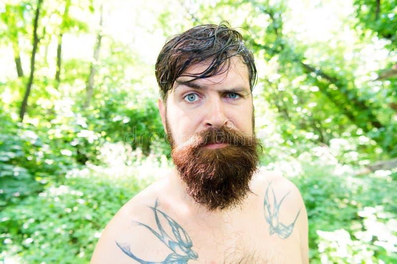 Grob und schroff Haariger Hippie, der langen Bart und Schnurrbart in der groben Art trägt Bärtiger Mann mit grobem Blick auf Somm stockbild