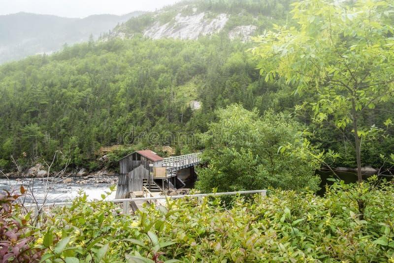 Grobelny Malbaie rzeki park narodowy zdjęcie stock